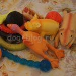 Покупки первой необходимости для щенка