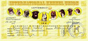 сертификаты Чаки Блэк Белогорье