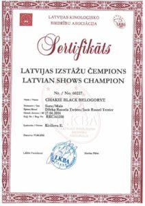 кобель джек рассел Чемпион Латвии