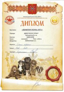 Дипломы Чаки Блэк Белогорье