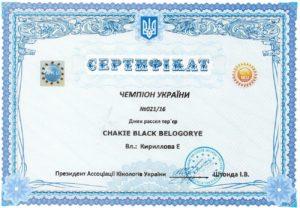 кобель джек рассел Чемпион Украины