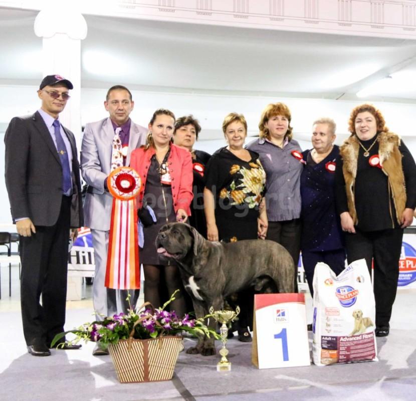 Кубок Боба Бремптона 2015