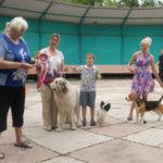 Выставка собак в Липецке