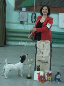 Чаки Блэк Белогорье - Лучшая Собака Выставки в Минске