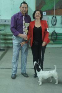 Эксперт Александр Опель (Германия) и Победитель выставки в Минске Чаки Блэк Белогорье
