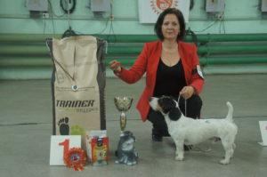 Лучшая Собака Выставки в Минске 2016 - Чаки Блэк Белогорье