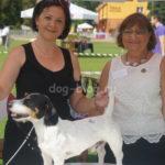 Международная выставка собак IKU Польша 19 июня 2016г