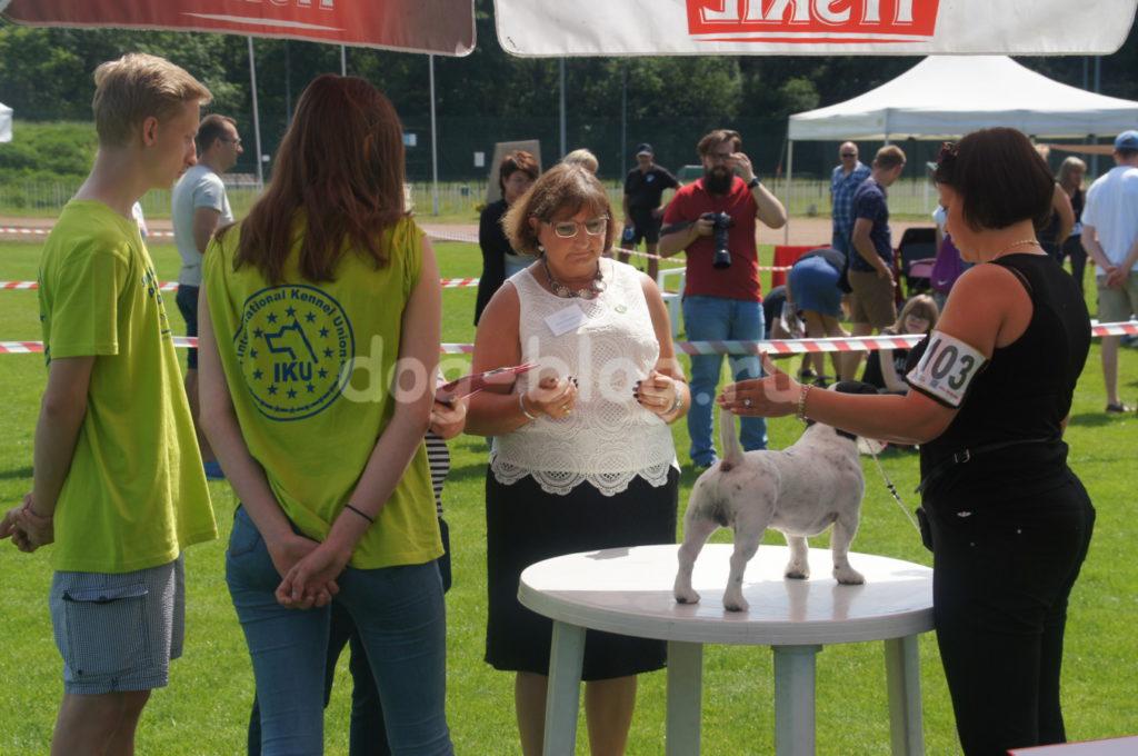 Чаки Блэк Белогорье на международной выставке в Польше