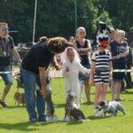 выставка собак в Польше 2016