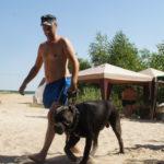 дрессировка и послушание собаки Белгород - выездное занятие