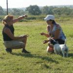 Фристайл с собаками в Орлином Гнезде