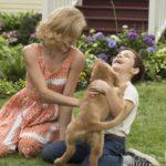 Премьера фильма «Собачья жизнь»