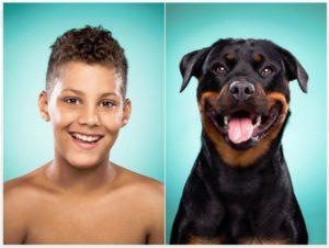 собаки похожи на своих хозяев