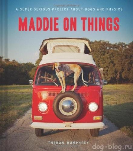 Медди на вещах (Maddie On Things)