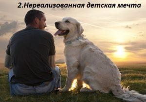 причины завести собаку