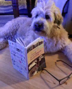 """книга Игоря Замлелов """"С собакой на автомобиле по Европе"""""""