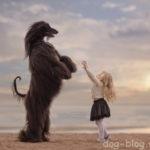 Фотопроект «Маленькие дети и их большие собаки». Часть 2