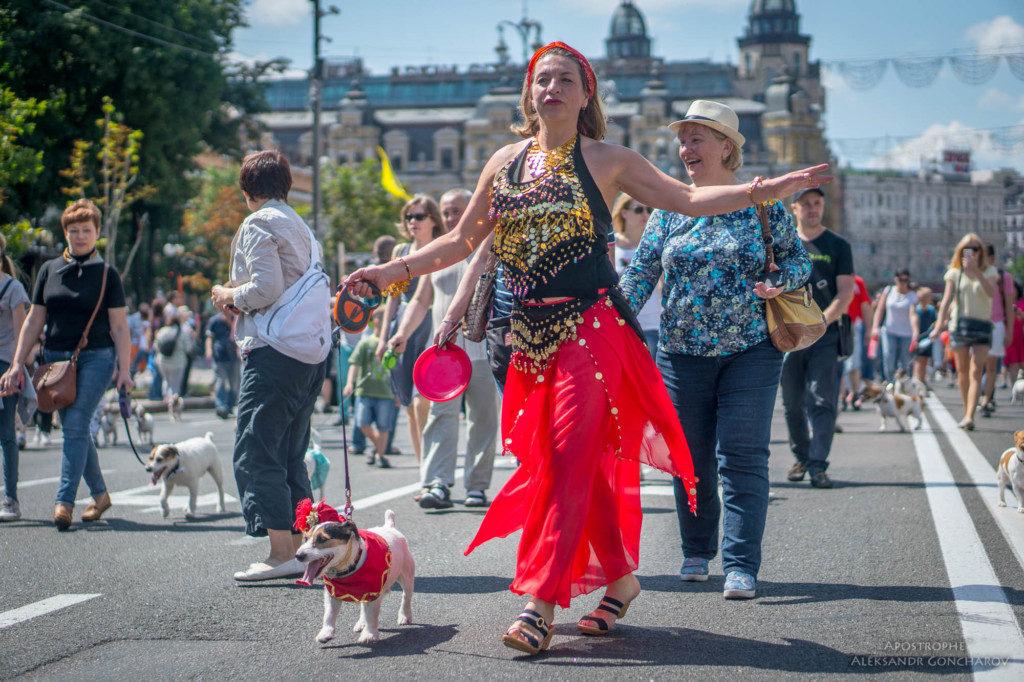 Киев парад джек рассел терьеров 2017
