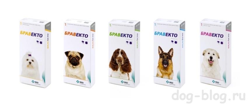 Бравекто таблетка от клещей для собак