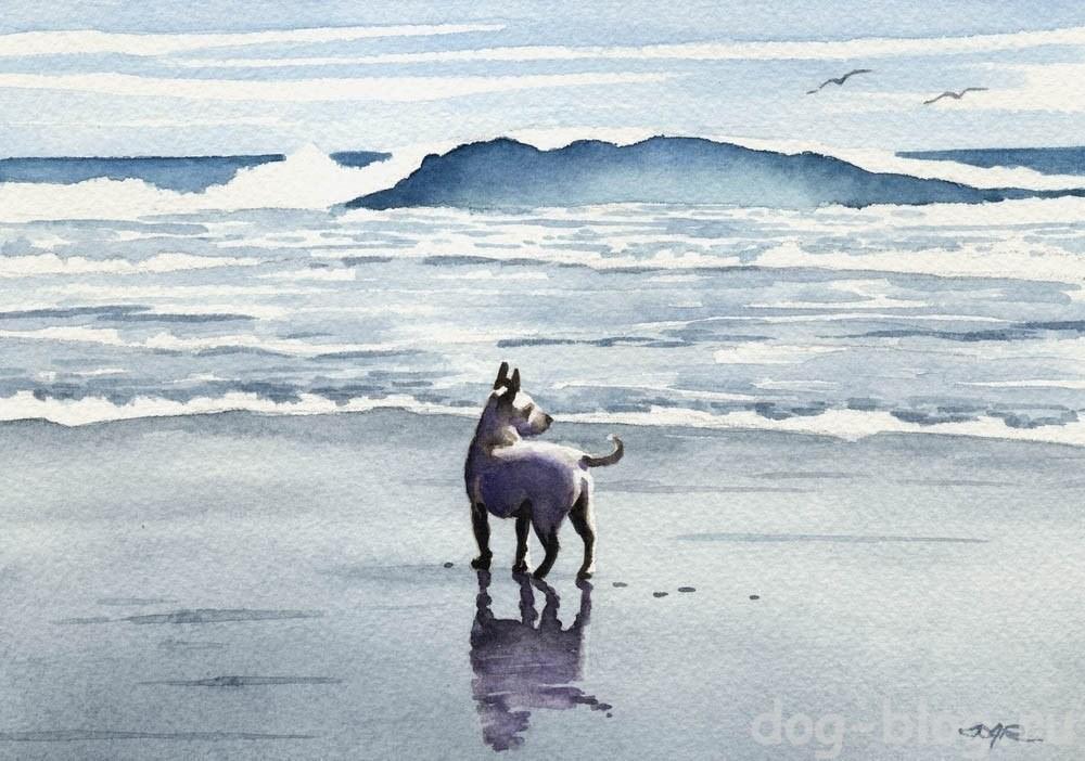 собака в живописи