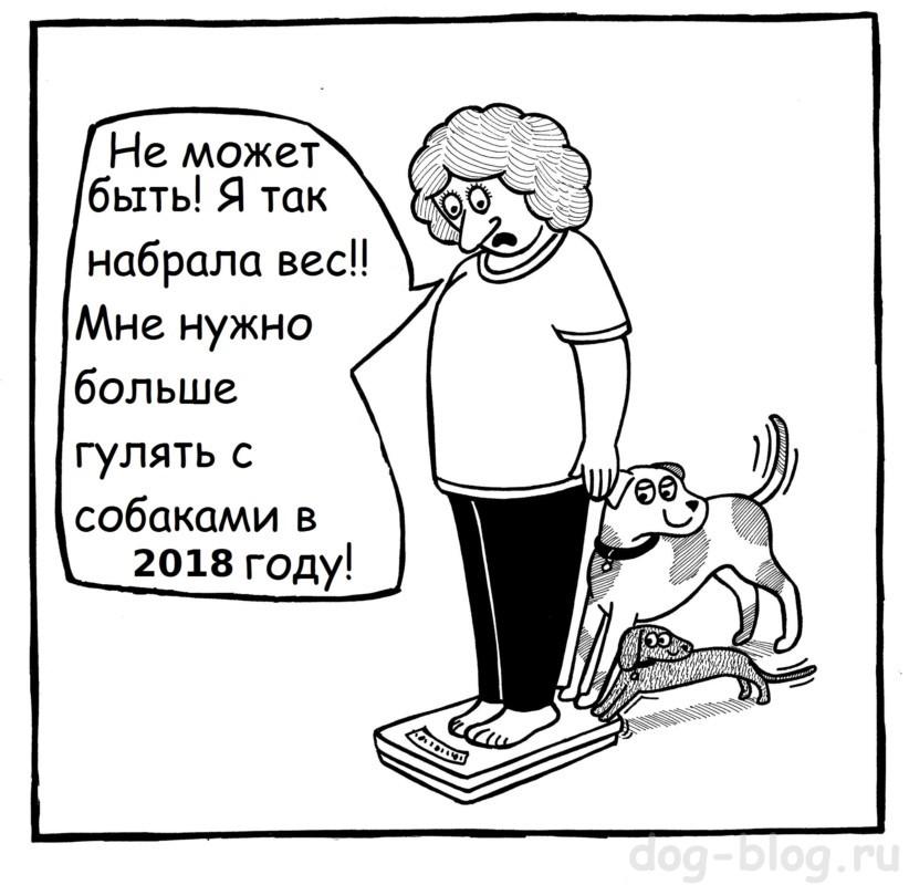 гулять с собакой - комикс