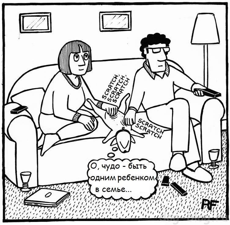 любимая собака - комикс