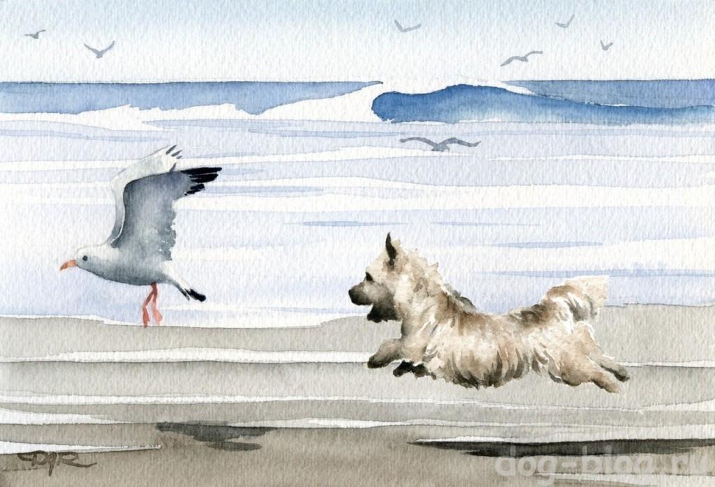 собака на море живопись