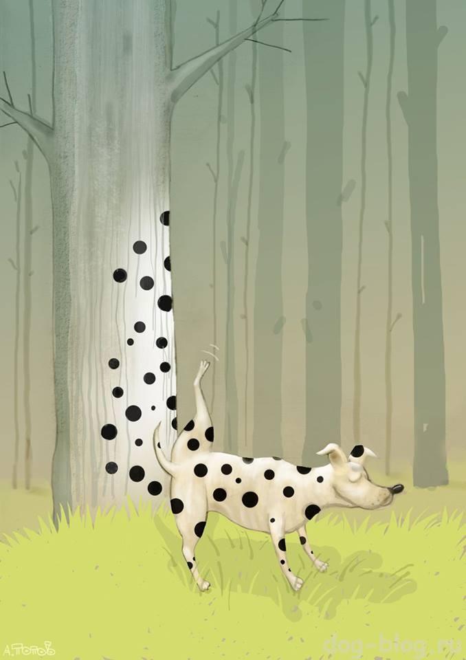 картины Попова Андрея про собак