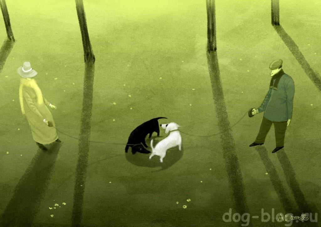 о собачьей жизни с юмором в картинках