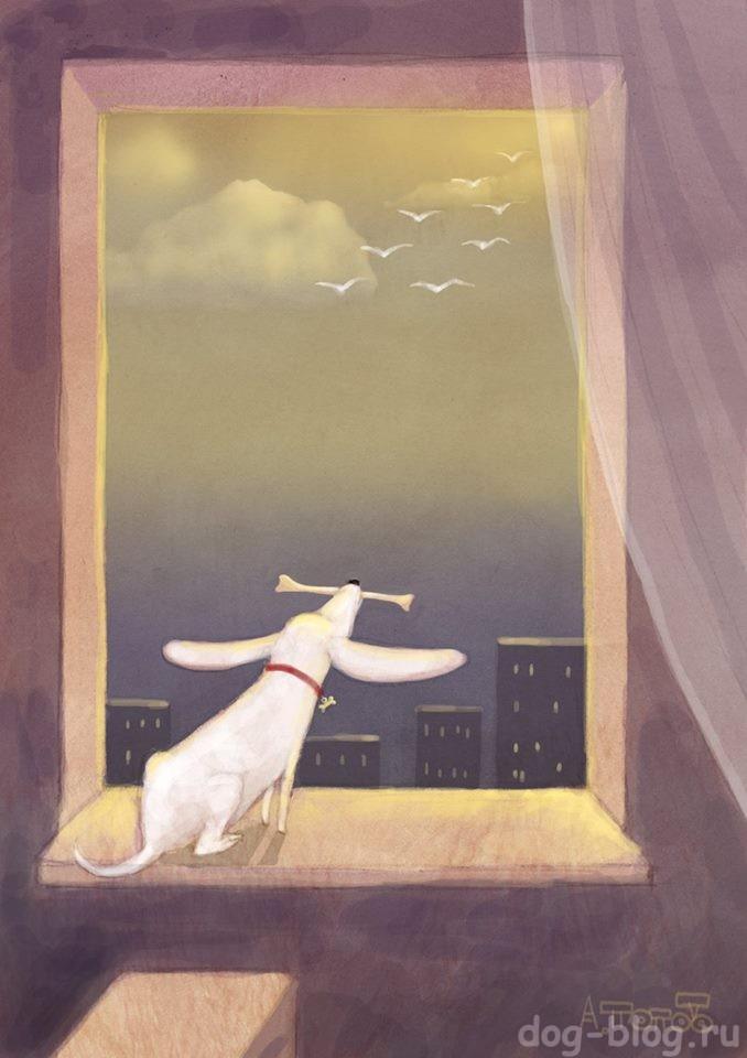 приколы про собак в рисунках