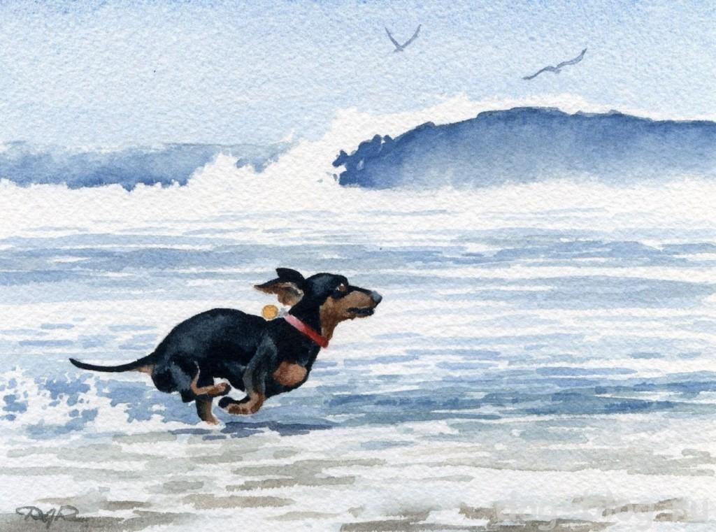 собака на море в живописи