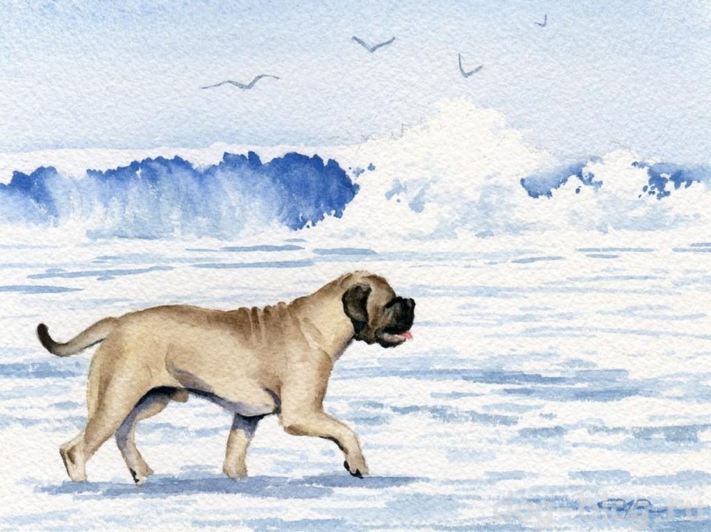 собаки живопись на море