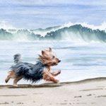 И снова про собак в живописи…