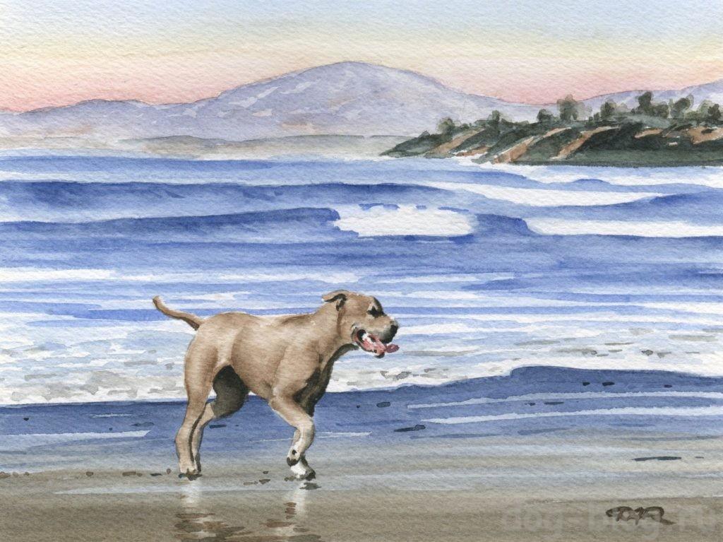 картины с собакми
