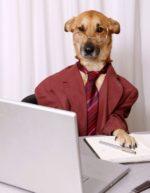 Если бы у собак был свой форум…