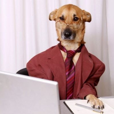 форум для собак