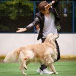 Танцы с собаками на Чемпионате Мира в Лейпциге. Илья и Лойд