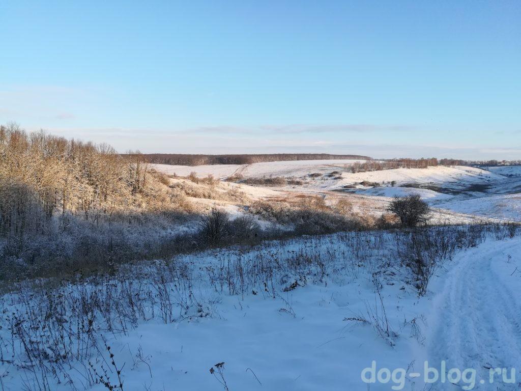 зимние прогулки Чаки Блэка