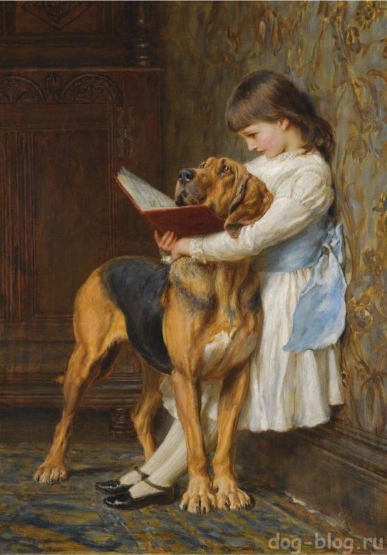 собаки на картинах Барбера