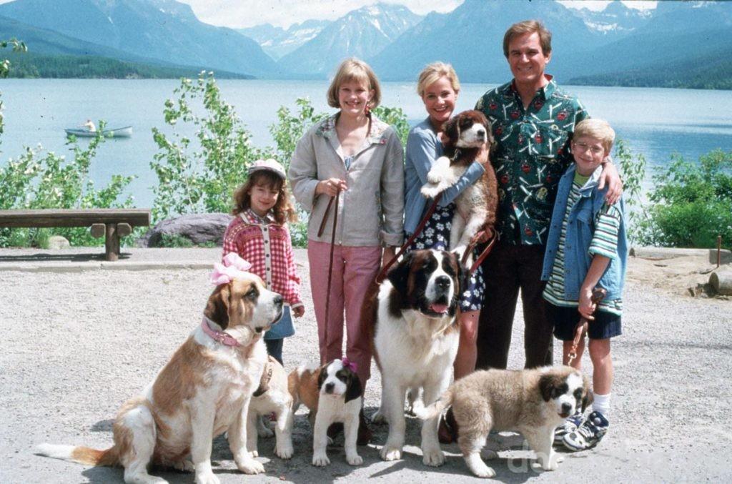 лучшие фильмы про собак