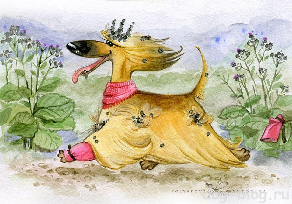 рисунки про собак