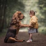 Дети и большие собаки. Проект А. Селивёрстова — III Часть.