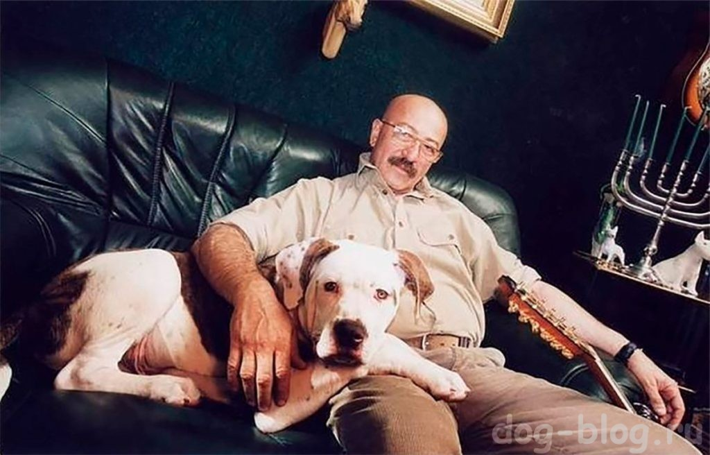 Розенбаум крылатая фраза про собак