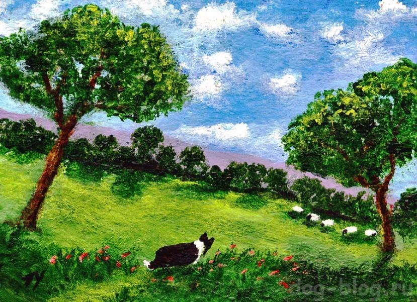 художник тодд янг и его дзен собаки