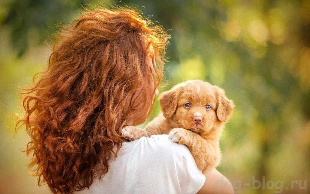 собака в жизни человека