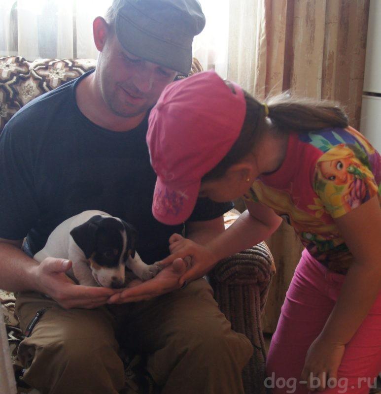 щенок в доме первые дни