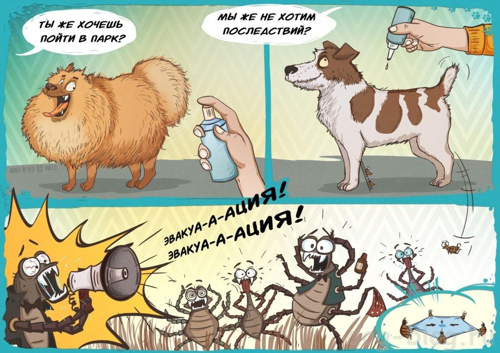 клещи и блохи у собак