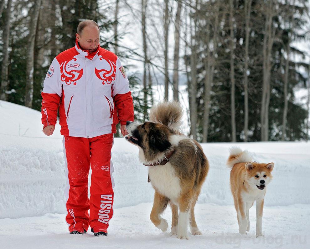 Путину подарили собаку