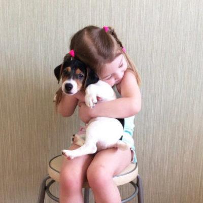 уговорить родителей купить собаку