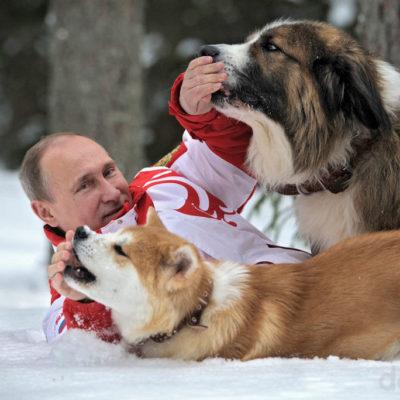 собака Путина порода